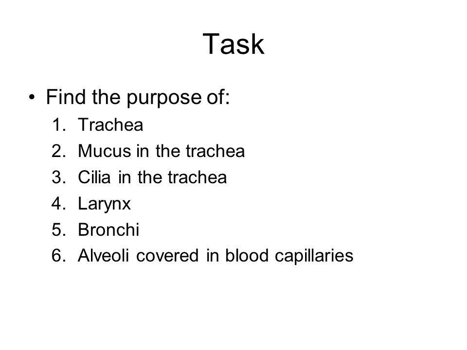 Task Find the purpose of: Trachea Mucus in the trachea