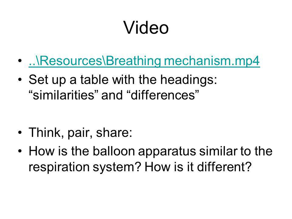 Video ..\Resources\Breathing mechanism.mp4