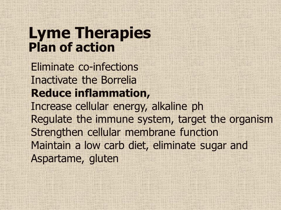 Lyme Therapies Plan of action