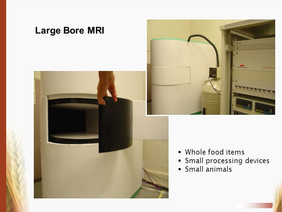 Large Bore MRI Whole food items Small processing devices Small animals