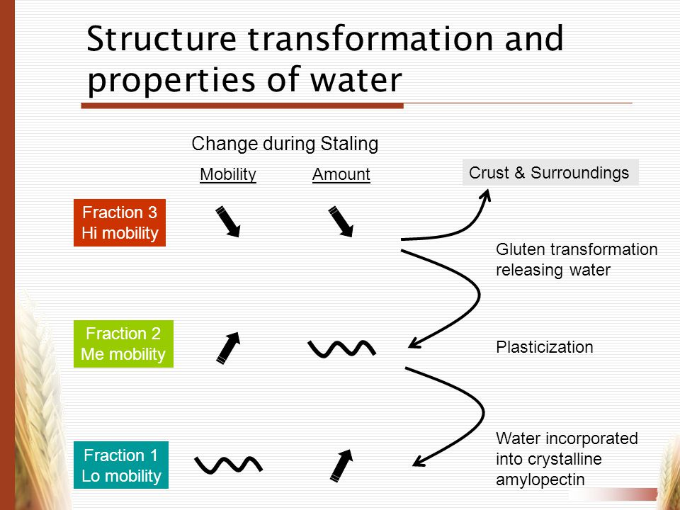 Structure transformation and properties of water