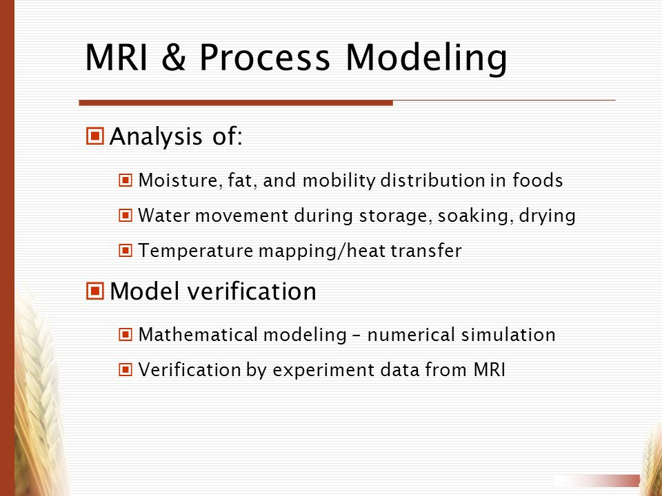MRI & Process Modeling Analysis of: Model verification