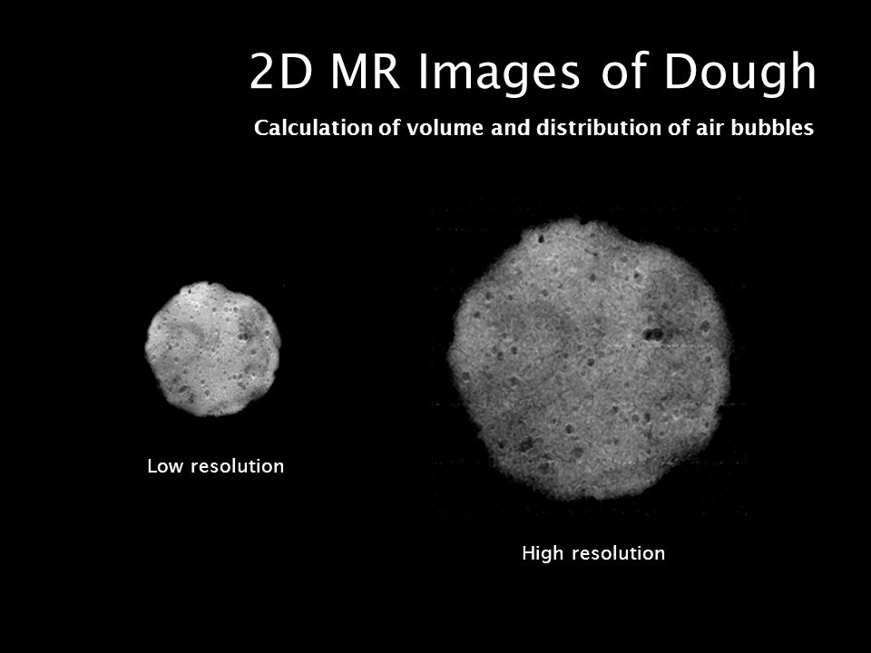 2D MR Images of Dough Calculation of volume and distribution of air bubbles.