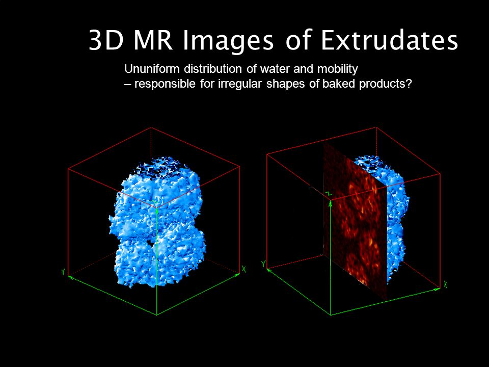 3D MR Images of Extrudates