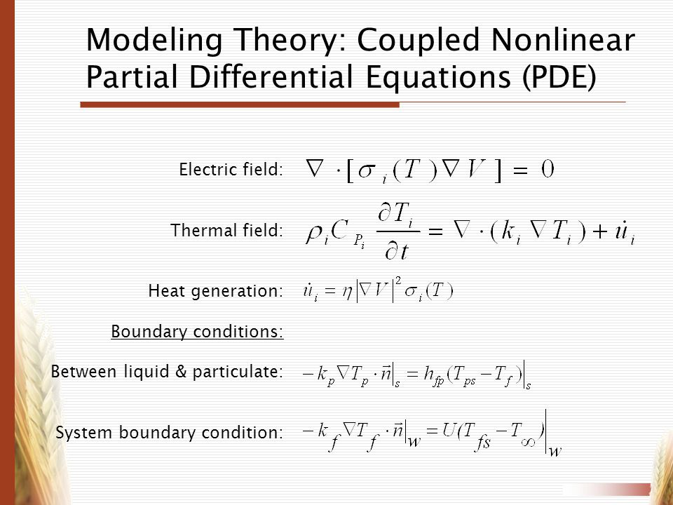 Modeling Theory: Coupled Nonlinear Partial Differential Equations (PDE)
