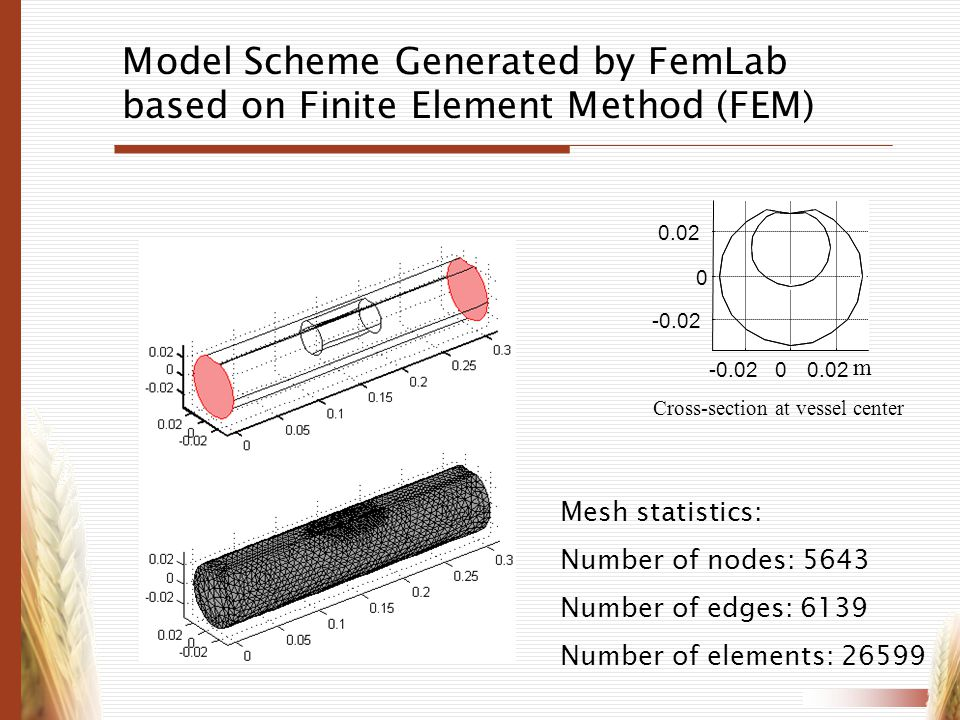 Model Scheme Generated by FemLab based on Finite Element Method (FEM)