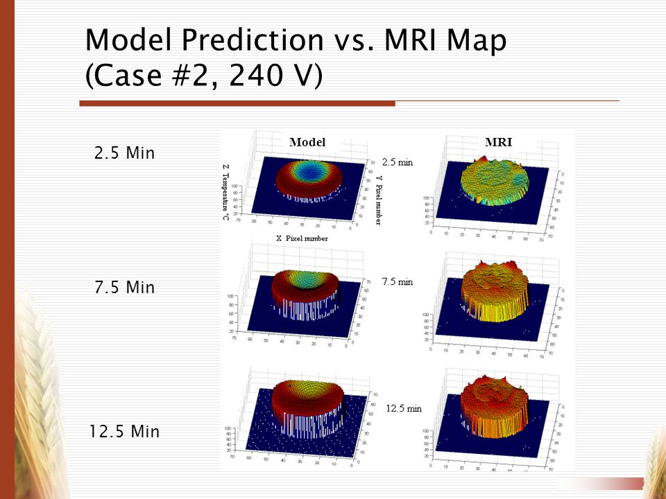 Model Prediction vs. MRI Map (Case #2, 240 V)