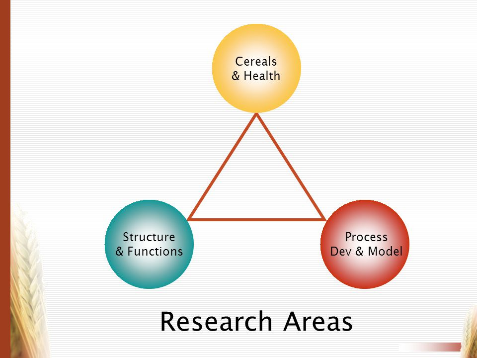 Research Areas Cereals & Health Structure & Functions Process