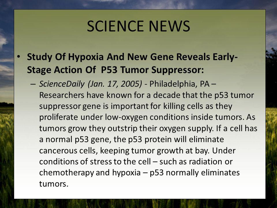 SCIENCE NEWS Study Of Hypoxia And New Gene Reveals Early-Stage Action Of P53 Tumor Suppressor: