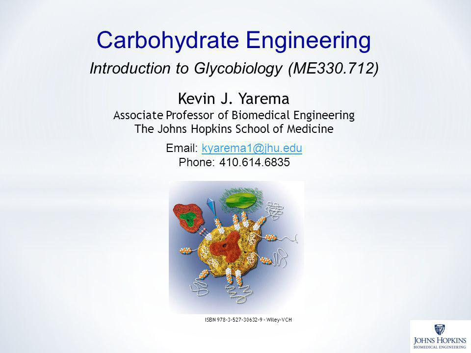 Carbohydrate Engineering