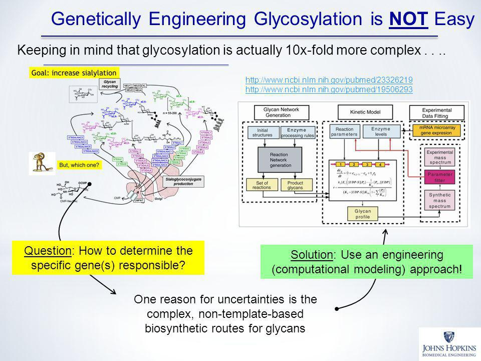 Genetically Engineering Glycosylation is NOT Easy