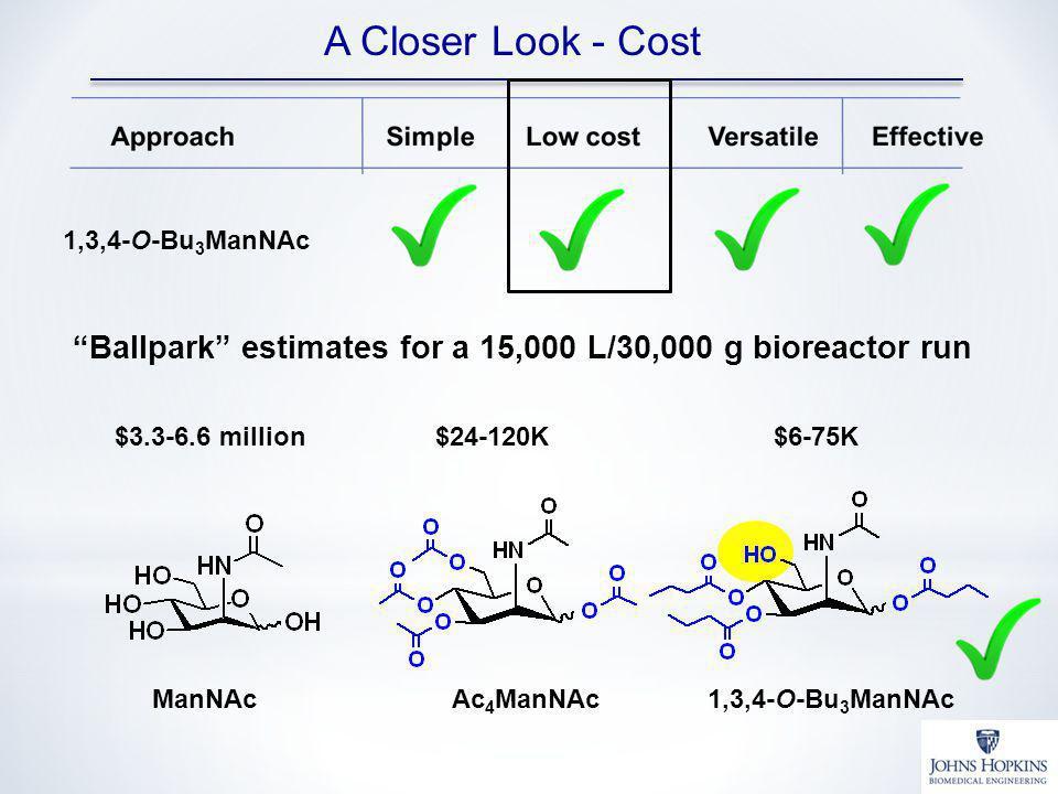 A Closer Look - Cost 1,3,4-O-Bu3ManNAc. Ballpark estimates for a 15,000 L/30,000 g bioreactor run.