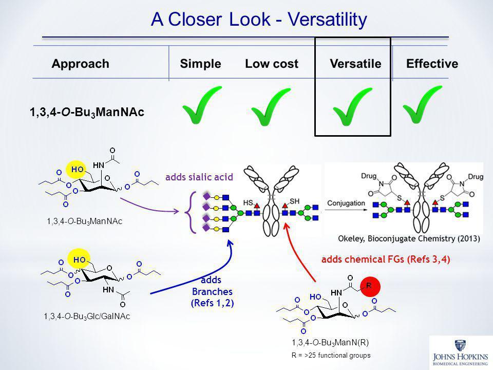 A Closer Look - Versatility