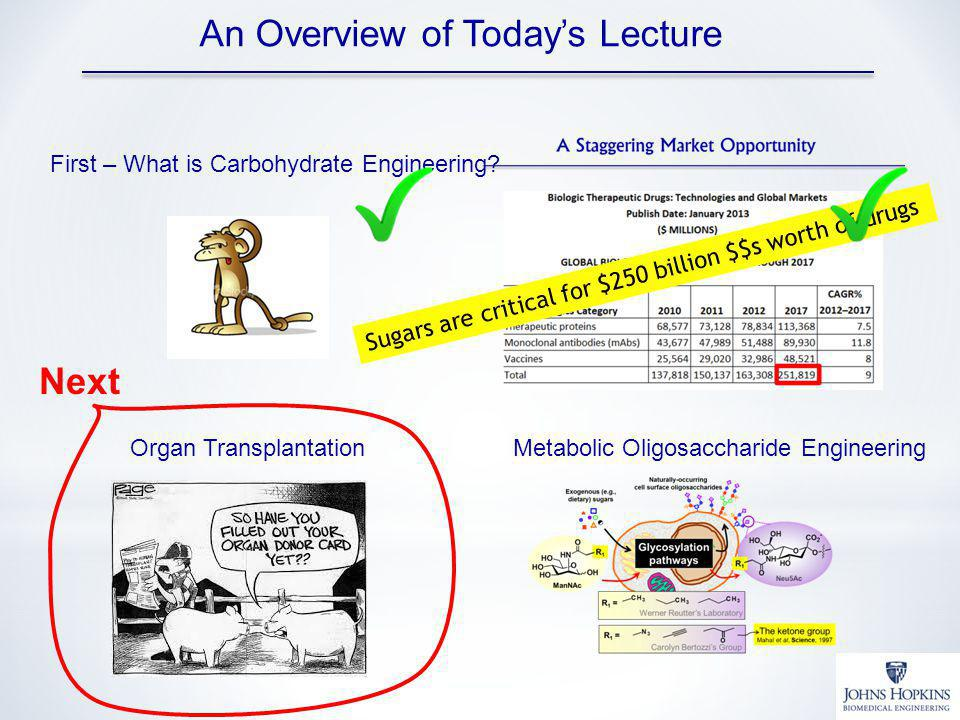 An Overview of Today's Lecture