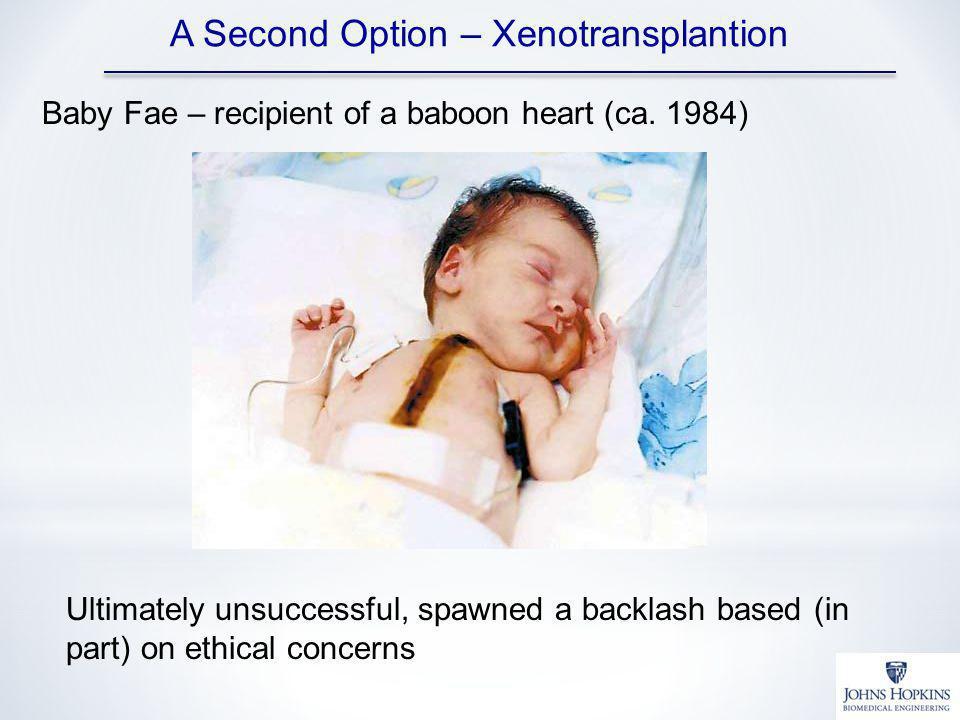 A Second Option – Xenotransplantion