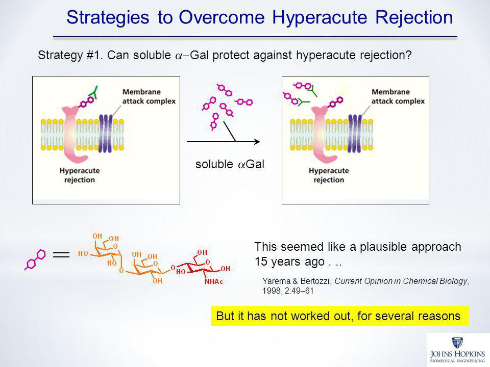 Strategies to Overcome Hyperacute Rejection