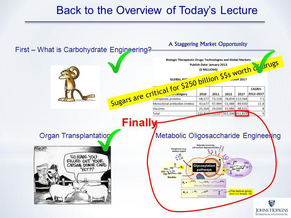 Back to the Overview of Today's Lecture