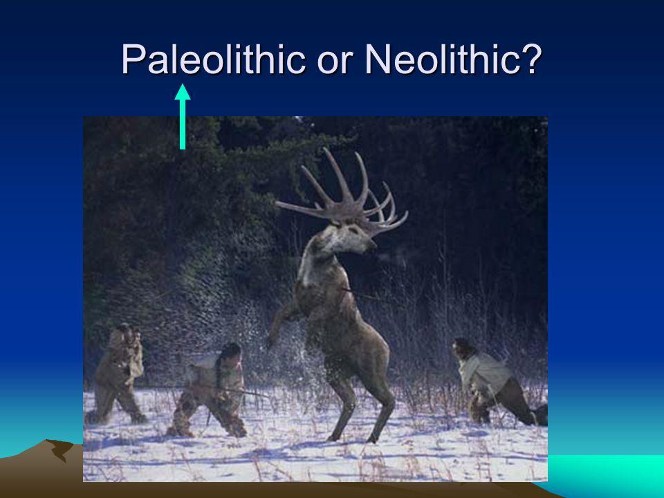 Paleolithic or Neolithic