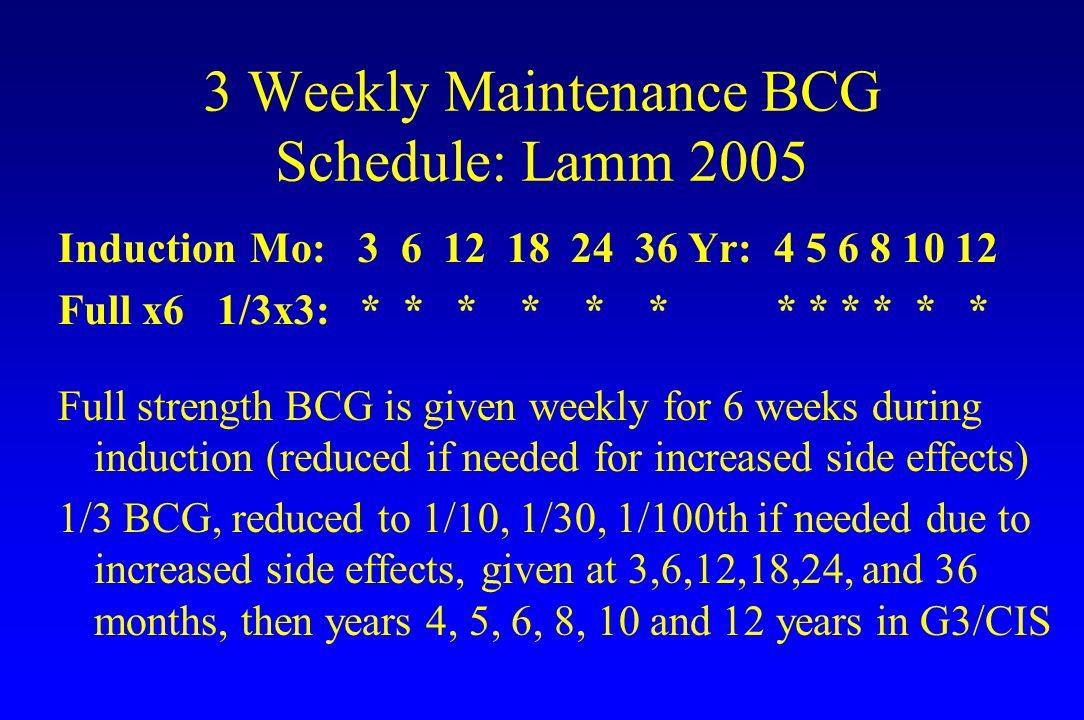 3 Weekly Maintenance BCG Schedule: Lamm 2005