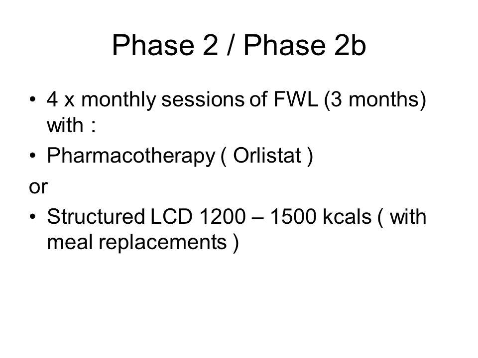 Phase 2 / Phase 2b 4 x monthly sessions of FWL (3 months) with :
