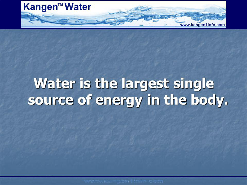 Water is the largest single source of energy in the body.