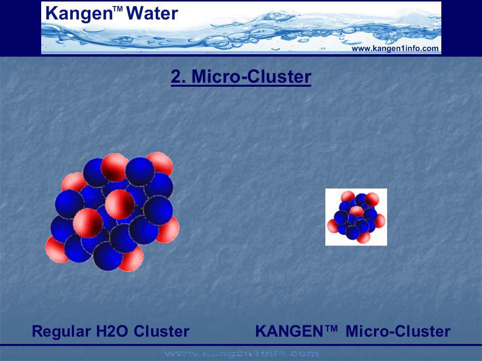 Regular H2O Cluster KANGEN™ Micro-Cluster