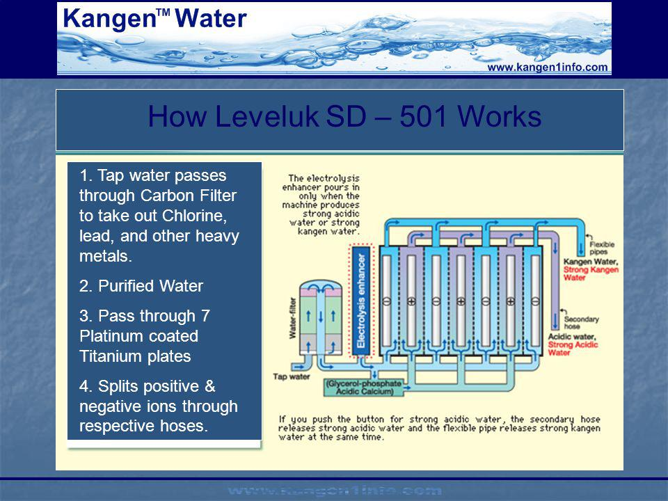 How Leveluk SD – 501 Works 1. Tap water passes through Carbon Filter to take out Chlorine, lead, and other heavy metals.