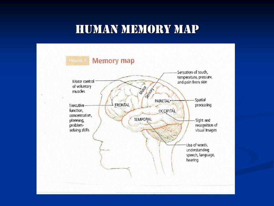 Human Memory Map