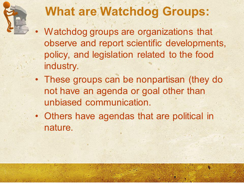 What are Watchdog Groups:
