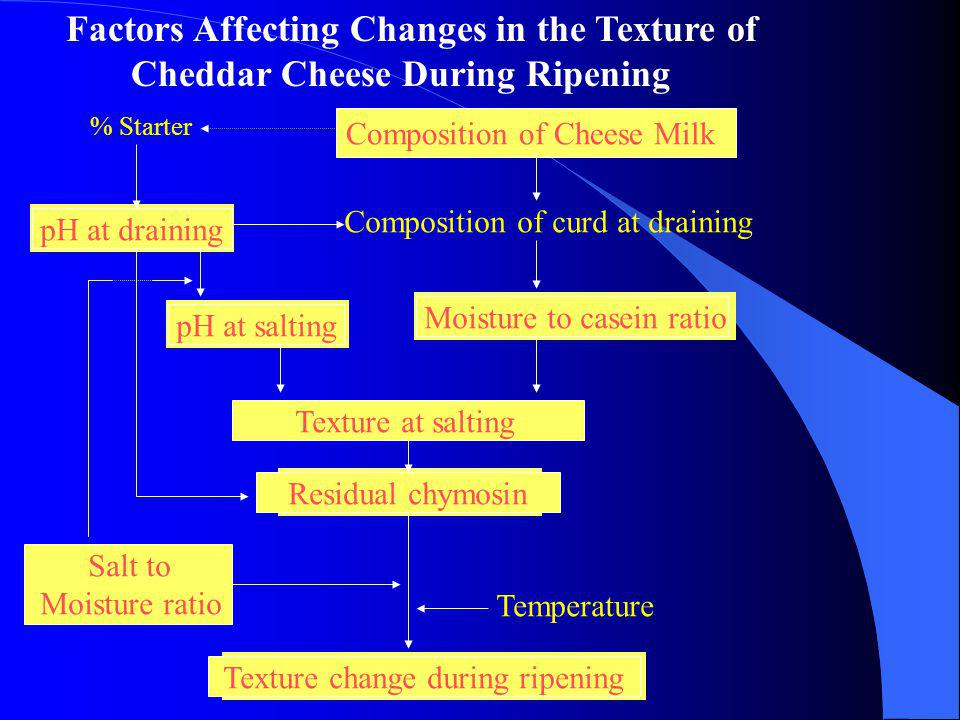 Factors Affecting Changes in the Texture of