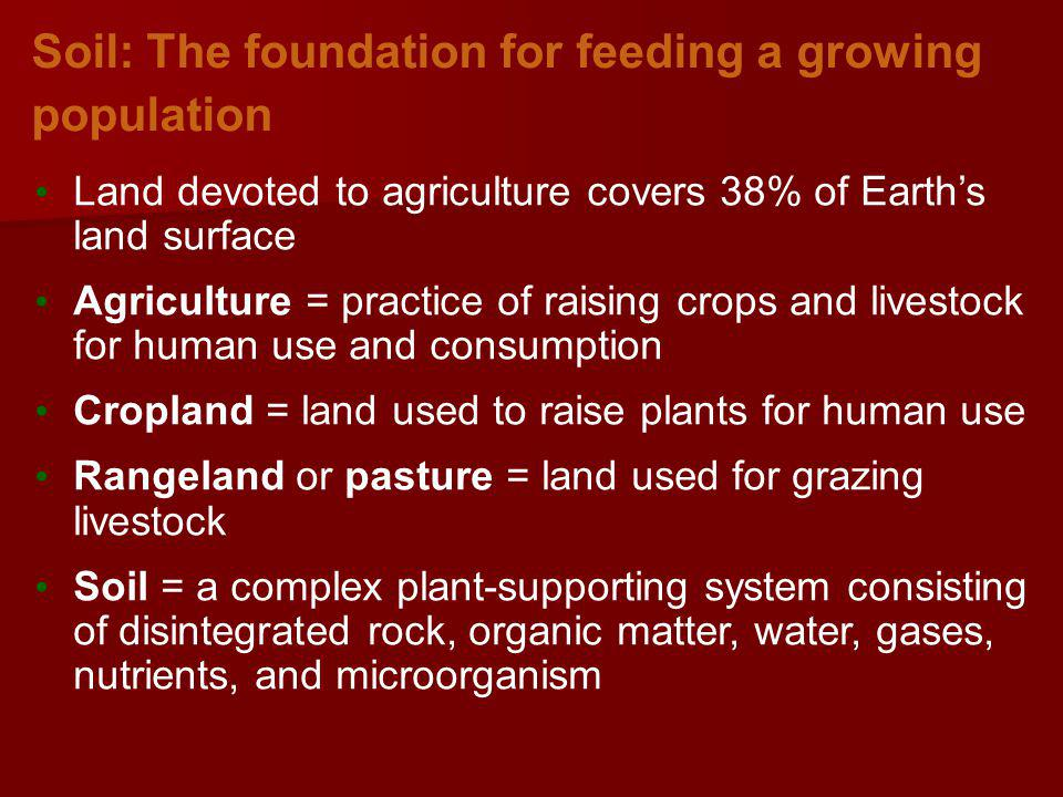 Soil: The foundation for feeding a growing population