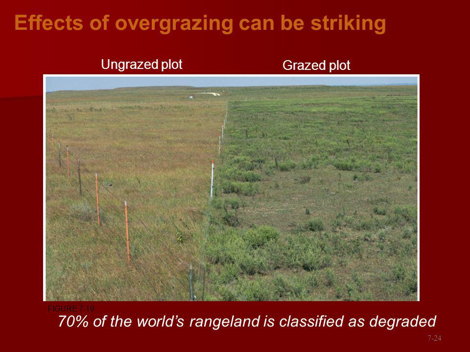 Effects of overgrazing can be striking