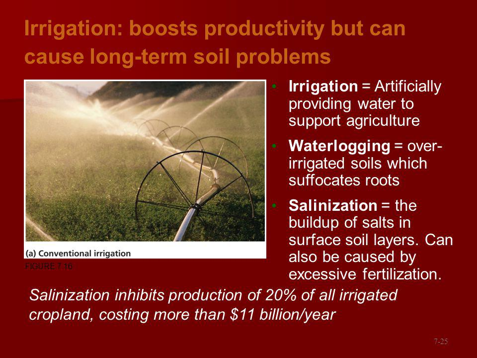 Irrigation: boosts productivity but can cause long-term soil problems