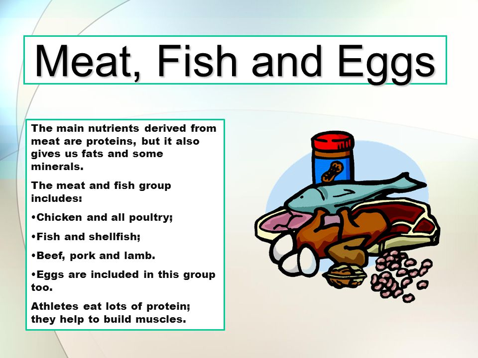 Meat, Fish and Eggs The main nutrients derived from meat are proteins, but it also gives us fats and some minerals.