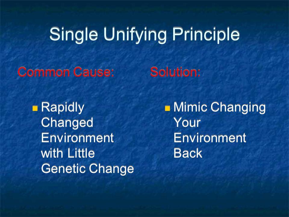 Single Unifying Principle