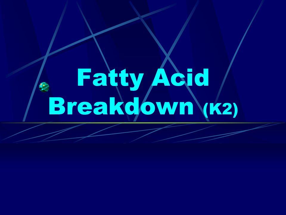 Fatty Acid Breakdown (K2)