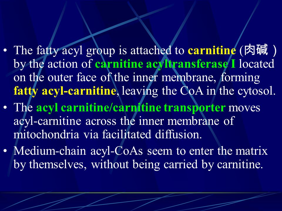 The fatty acyl group is attached to carnitine (肉碱) by the action of carnitine acyltransferase I located on the outer face of the inner membrane, forming fatty acyl-carnitine, leaving the CoA in the cytosol.