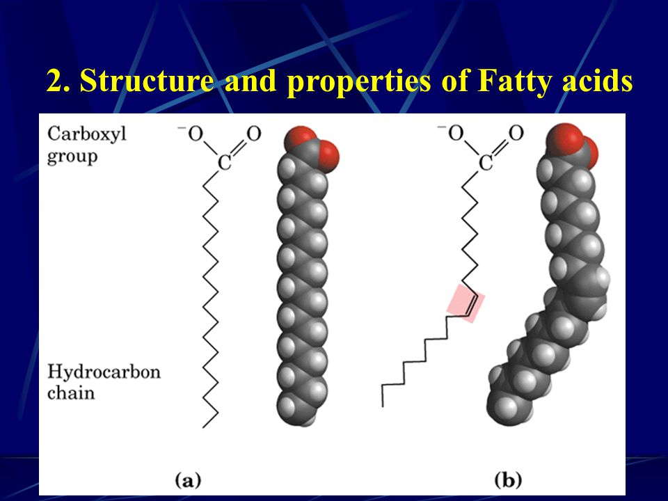 2. Structure and properties of Fatty acids
