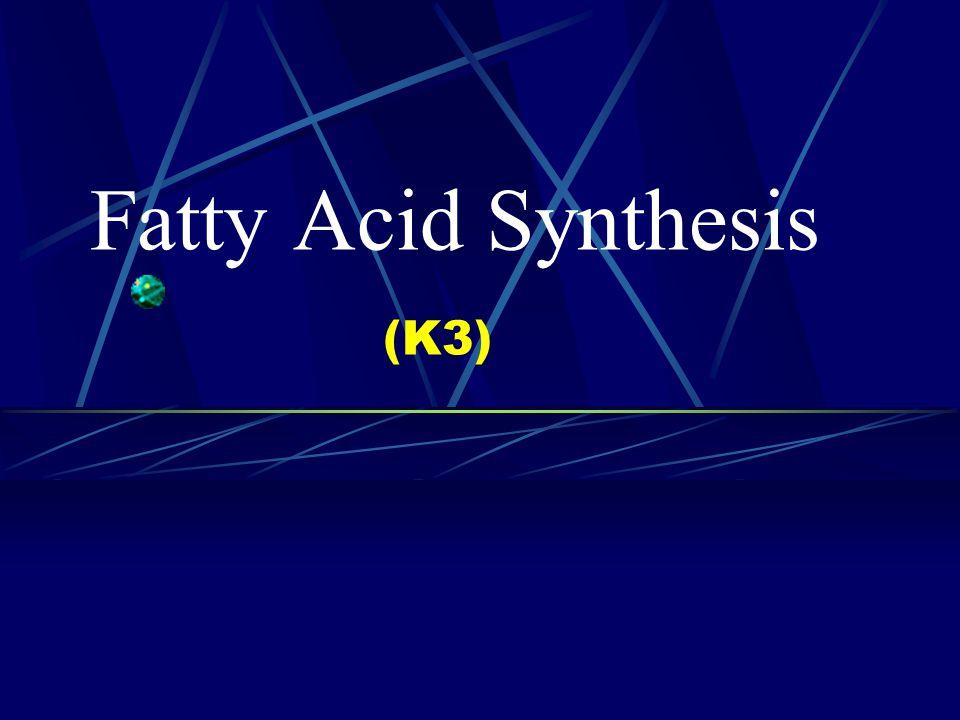Fatty Acid Synthesis (K3)