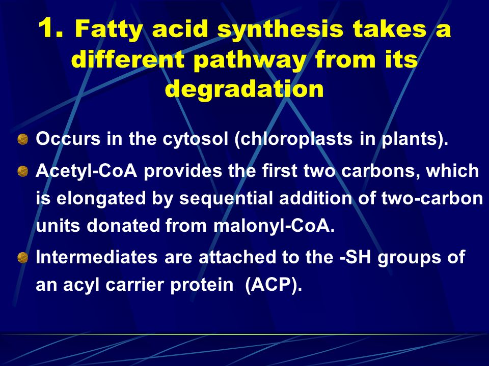 1. Fatty acid synthesis takes a different pathway from its degradation