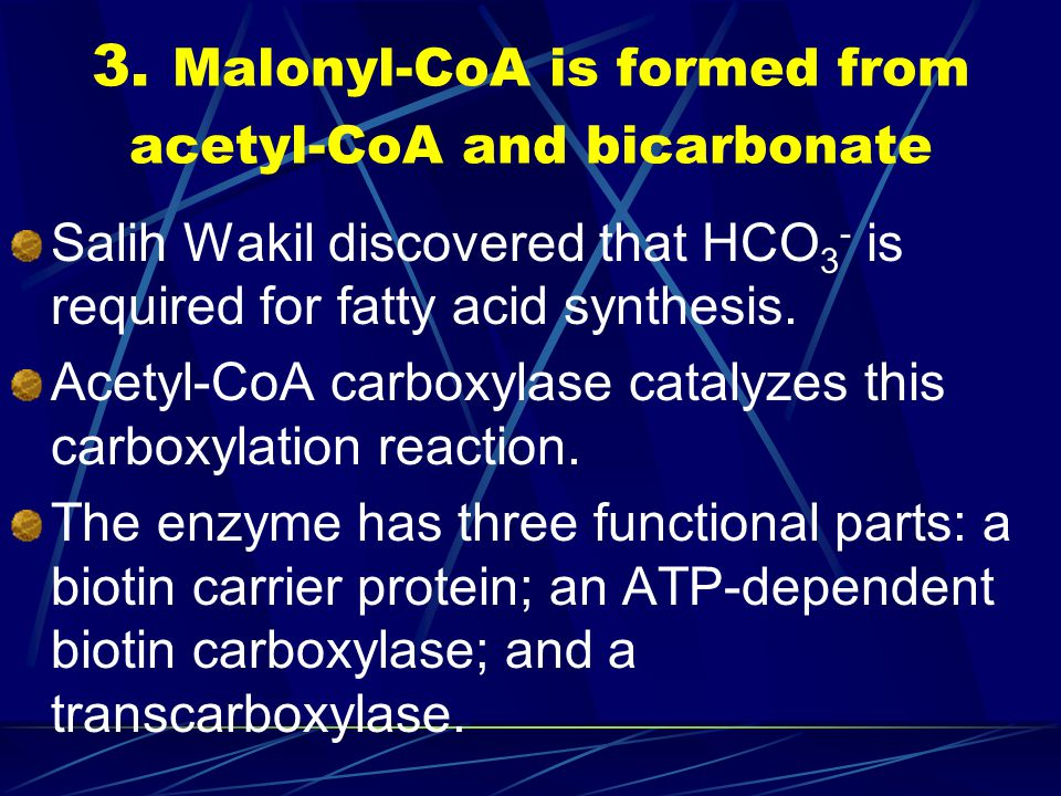3. Malonyl-CoA is formed from acetyl-CoA and bicarbonate