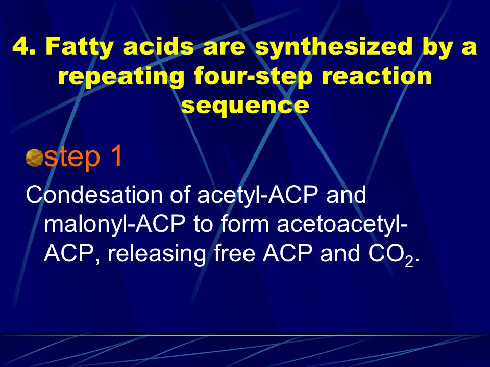 4. Fatty acids are synthesized by a repeating four-step reaction sequence