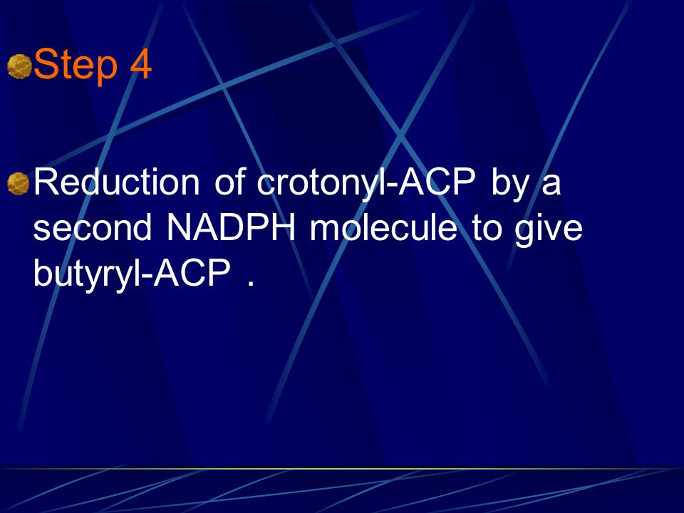 Step 4 Reduction of crotonyl-ACP by a second NADPH molecule to give butyryl-ACP .