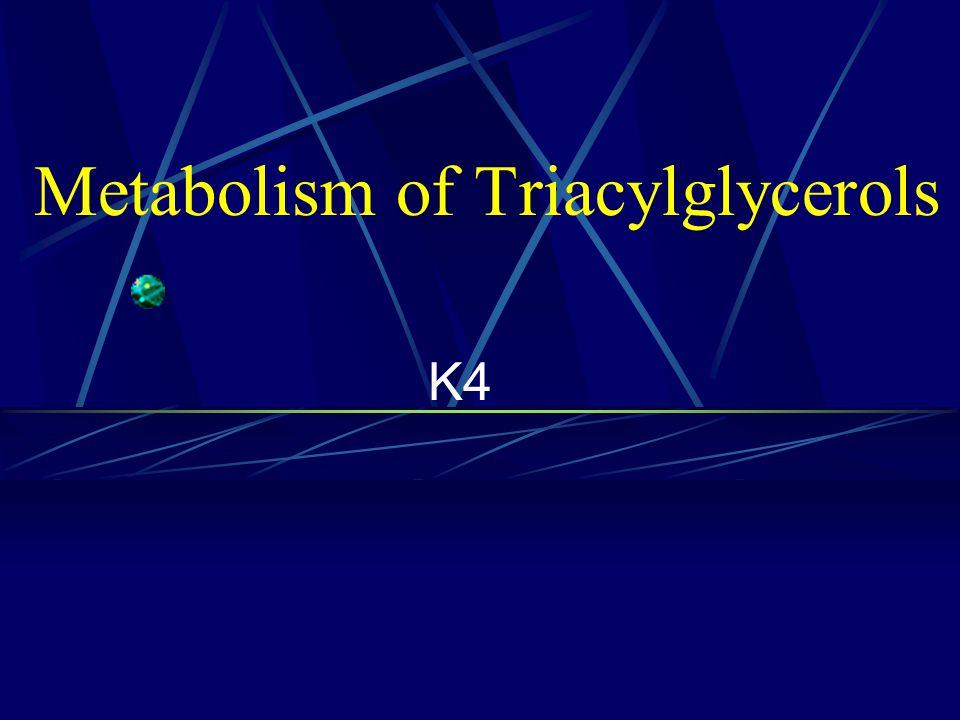 Metabolism of Triacylglycerols