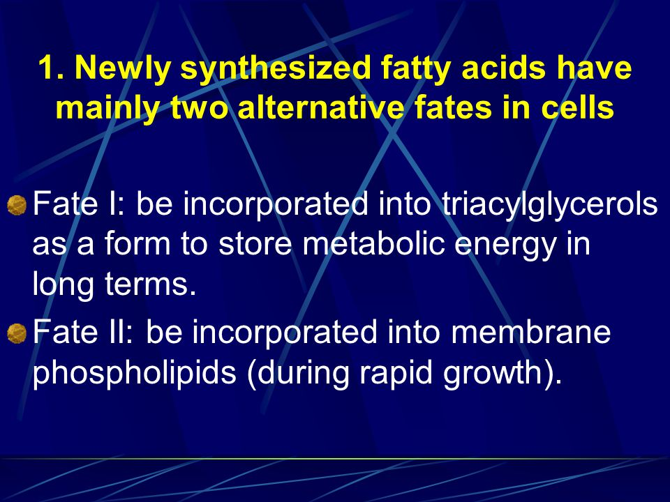 1. Newly synthesized fatty acids have mainly two alternative fates in cells