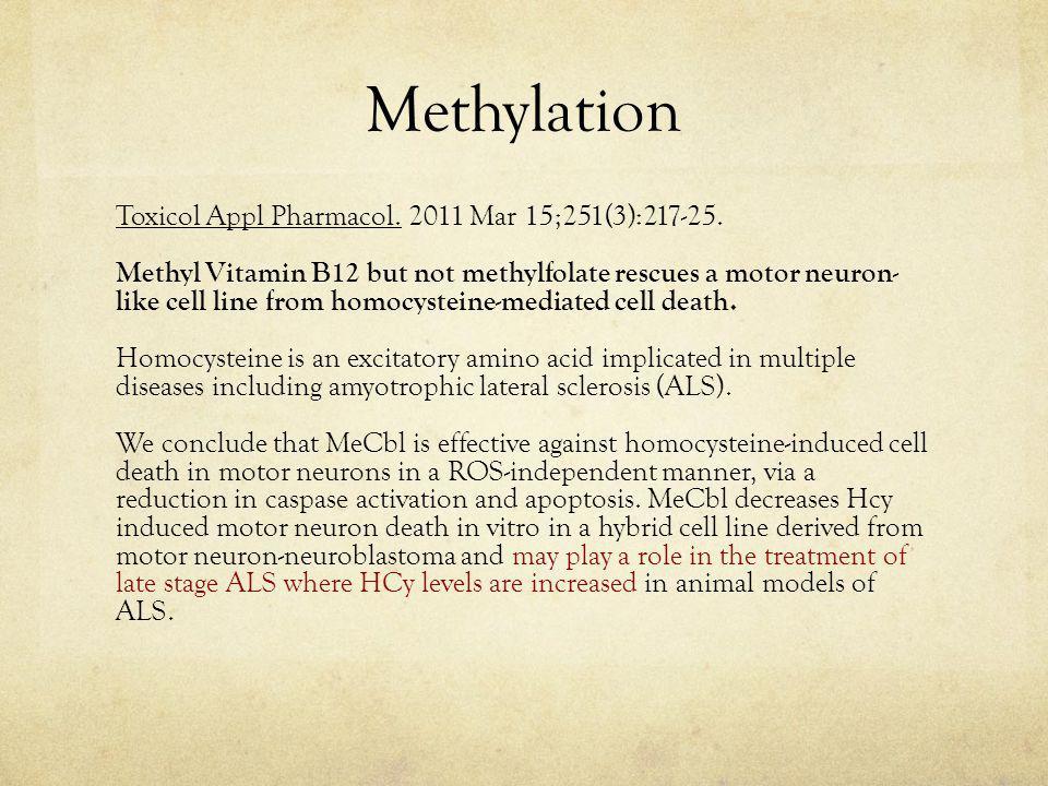 Methylation Toxicol Appl Pharmacol. 2011 Mar 15;251(3):217-25.