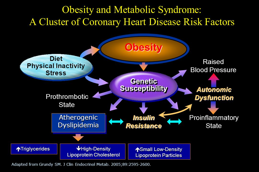 Obesity and Metabolic Syndrome: A Cluster of Coronary Heart Disease Risk Factors