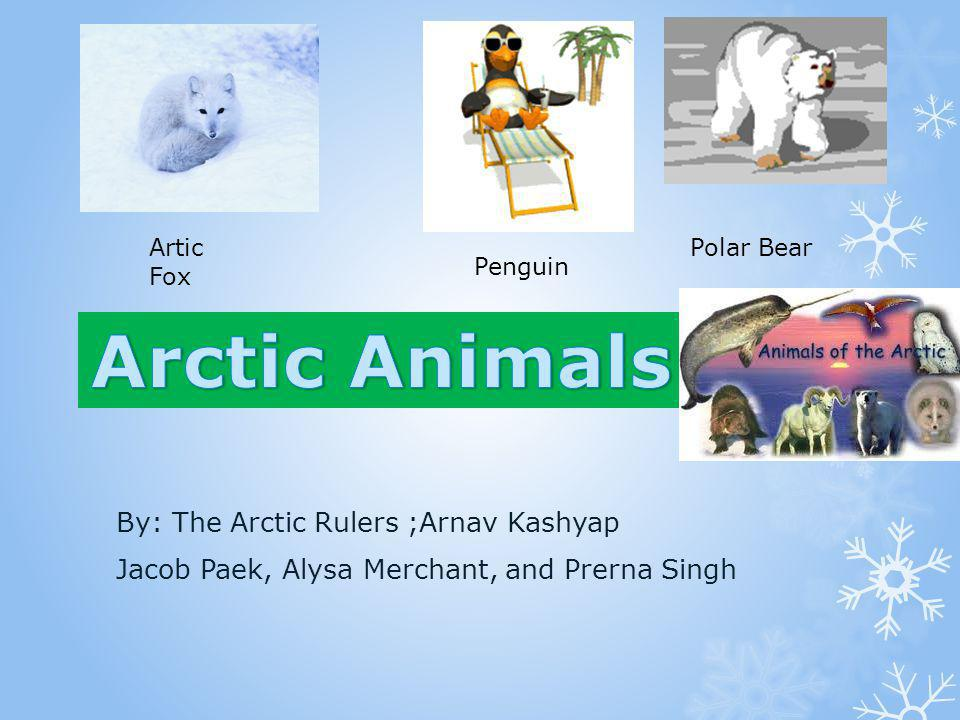 Arctic Animals Arctic Animals By: The Arctic Rulers ;Arnav Kashyap