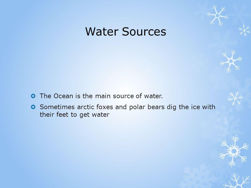 Water Sources The Ocean is the main source of water.