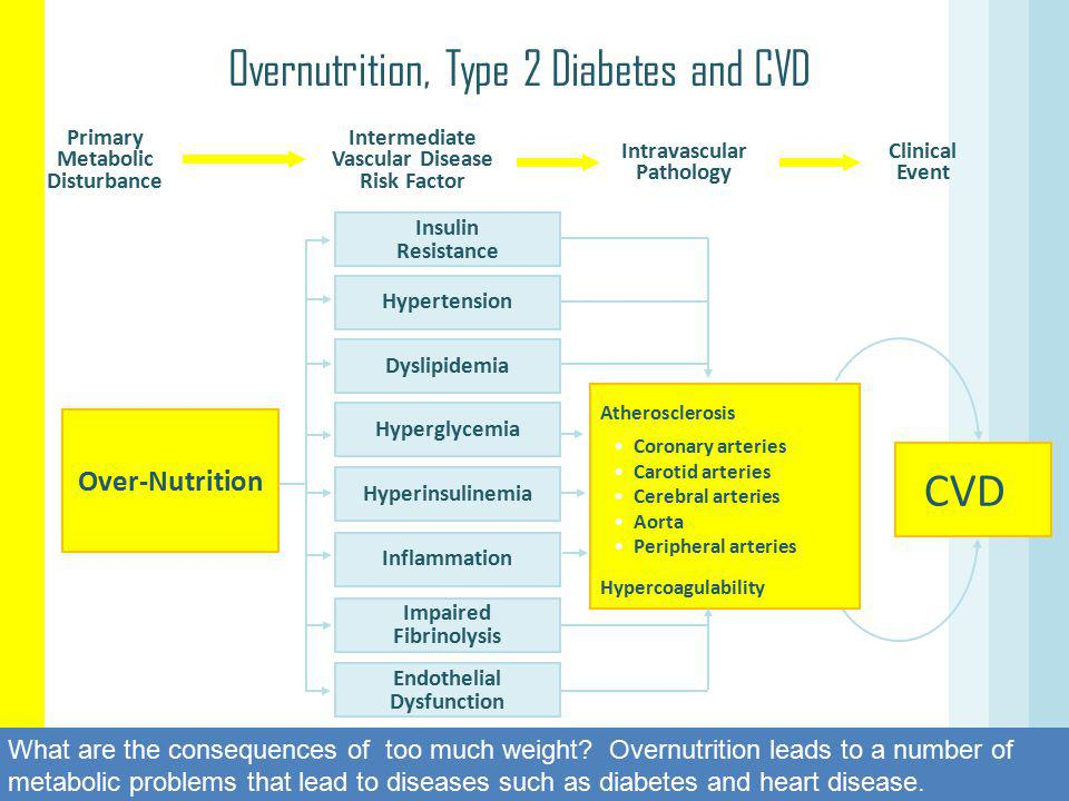 Overnutrition, Type 2 Diabetes and CVD